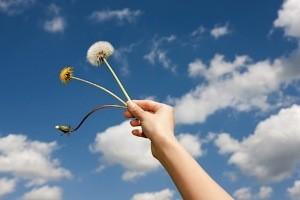 برای داشتن زندگی بهتراین کارهای کوچک را انجام دهید