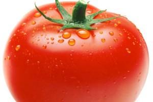 حرام اعلام شدن مصرف گوجه فرنگی