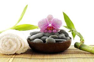 گیاه بامبو فقط برای تزئین نیست!!