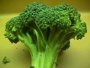 پنج خوراکی برای مقابله با آلرژی پاییزه