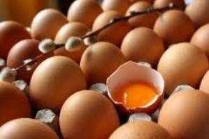 تخم مرغ در خدمت بیماری یا سلامت؟!!