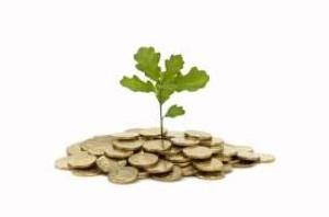 8 قانون برای یک سرمایه گذاری موفق