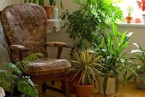 مقابله با آلودگی هوای خانه
