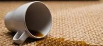 چگونه باید لکه های مختلف فرش را پاک کنیم؟!