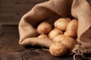 نگهداری اصولی 5 ماده غذایی مهم