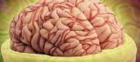 تفاوت مغز افرادی که خودکشی میکنند با افراد عادی