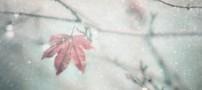 مشکلات روحی که در زمستان با آن مواجه می شویم