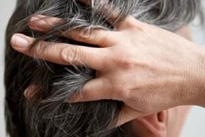 عصاره های گیاهی برای مراقبت از مو