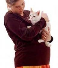 خانمهای باردار، نگهداری گربه ممنوع