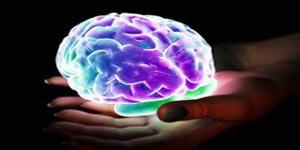 در طول اُرگاسم چه اتفاقاتی درمغز میافتد؟
