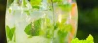 طرز تهیه چند شریت گیاهی مخصوص تابستان