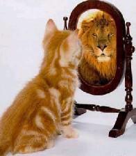 آشنایی با مراحل رشد اعتماد به نفس