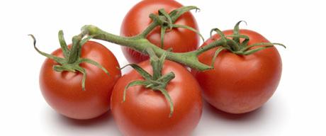 خواص اعجاب انگیز گوجه فرنگی