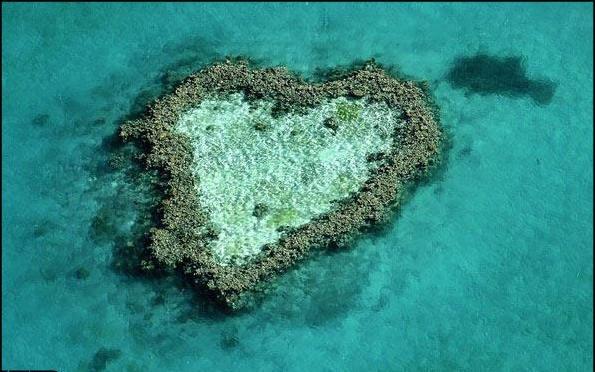 زیبا ترین قلب زمین !