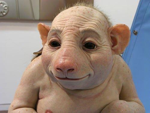 تصویر فرد مبتلا به آنفولانزای خوکی...(طنز)