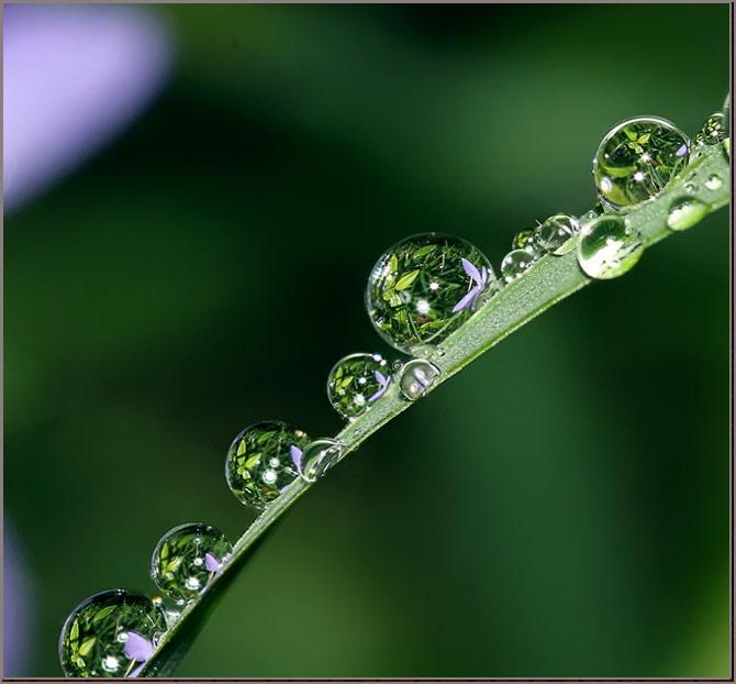 عکس های والپیپر بسیار زیبا از طبیعت ، www.pixnaz.info