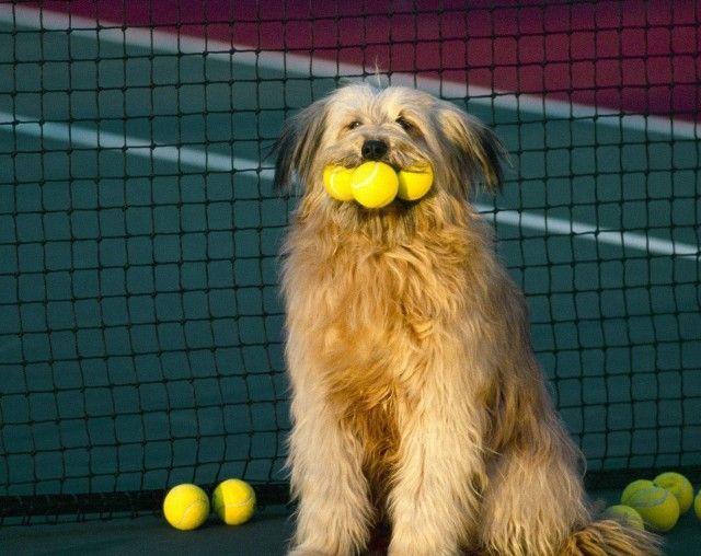 عکسهایی جالب و خنده دار ، www.pixnaz.info