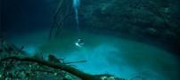 عکسهایی از رودخانه ای زیر دریای مکزیک