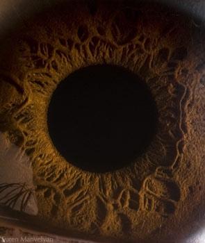 زیباییهای چشم یک انسان (تصویری)