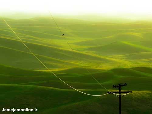 ده عكس برتر نشنال جئوگرافیك 2010