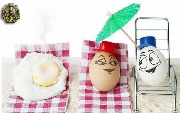 عکسهایی از تخم مرغ های بامزه