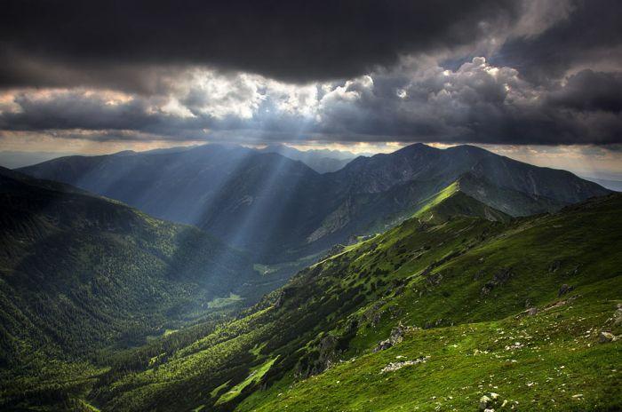 عکس هایی از هنر نمایی خداوند در طراحی طبیعت