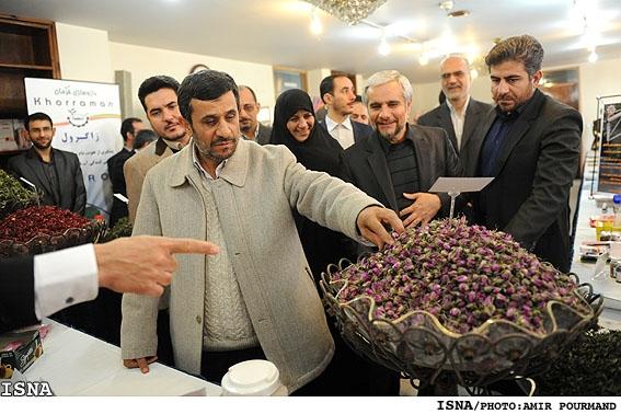 داماد شانه به شانه احمدی نژاد (تصویری)