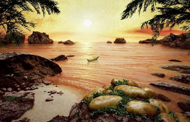 خلق آثار هنری بسیار زیبا با میوه ها