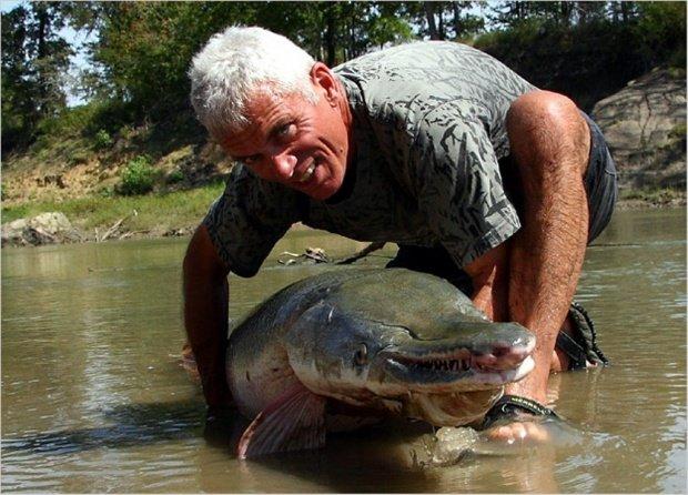 عکسهایی بسیار عجیب از تمساح ماهی