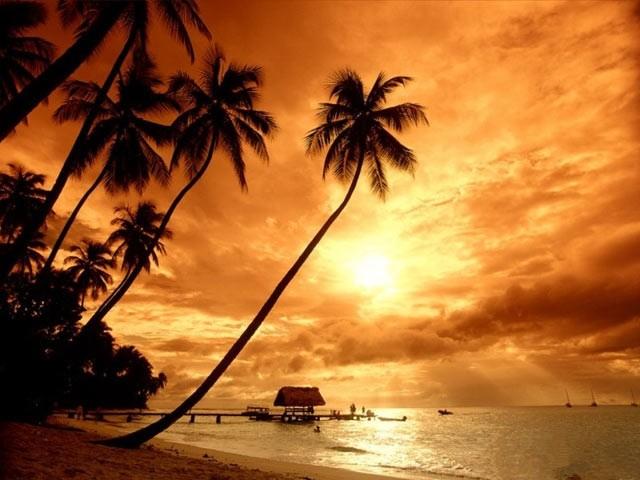 عکس هایی بی نظیر از زیبایی های جزیره بالی
