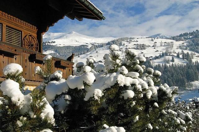 عکس هایی بسیار دیدنی از طبیعت زیبای سوئیس | www.shadine.ir