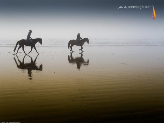 عکس هایی بسیار زیبا و دیدنی از عکاسی انعکاسی