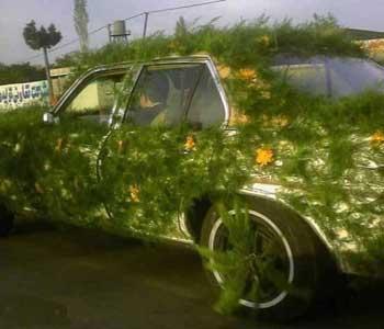 عکس های جالب ترین ماشین عروس های دنیا | www.irannaz.com