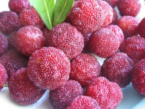 عکس هایی از میوه های شگفت انگیز
