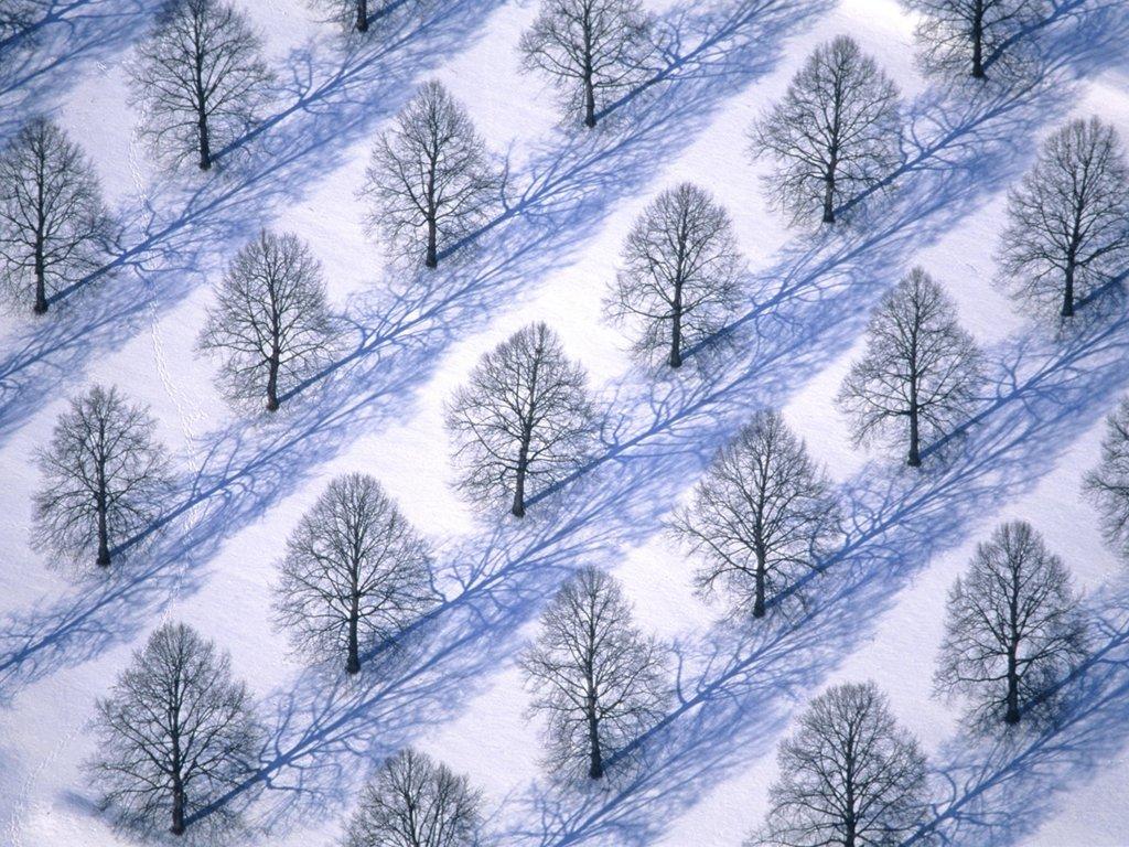 والپیپرهای بسیار زیبای فصل زمستان | www.irannaz.com