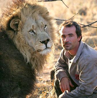 عکس های دوستی عجیب مردی با شیرهای وحشی
