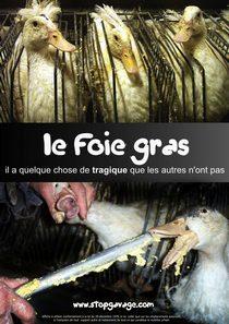 تصاویری وحشتناک از تهیه غذای نکبت فرانسوی