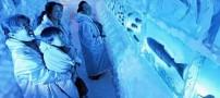 عکسهای آکواریوم بسیار عجیب یخی در ژاپن