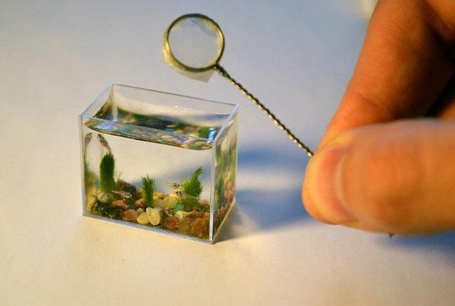 تصاویری دیدنی از کوچکترین آکواریوم جهان
