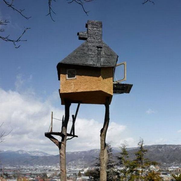 عکسهایی دیدنی از خطرناک ترین خانه های درختی