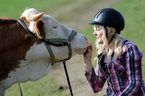 پرش دختری با گاو از موانع میدان اسب دوانی+تصاویر