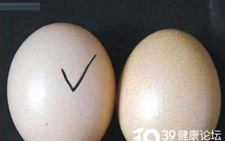 نحوه باور نکردنی درست شدن تخم مرغ تقلبی چینی