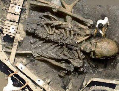 کشف انسان هایی با یازده متر قد (+عکس)