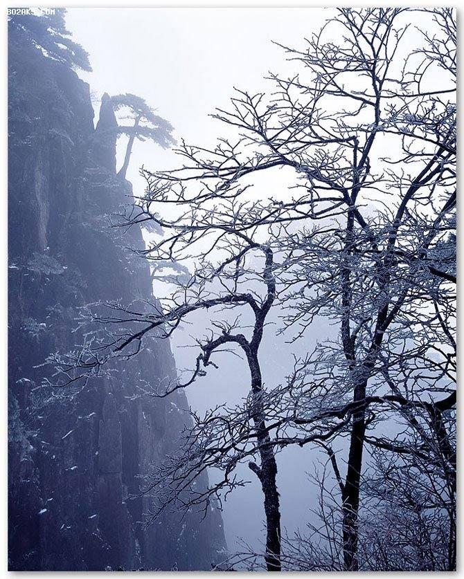 عکس هایی دیدنی از مناظر زیبای طبیعی