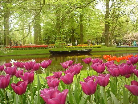 تصاویری بسیار دیدنی از زیبا ترین پارک جهان