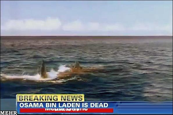 عکس هایی از جسد بن لادن در دهان کوسه