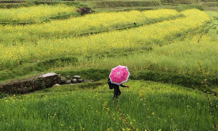 عکسهای جالب و دیدنی شنبه 7 خرداد 1390