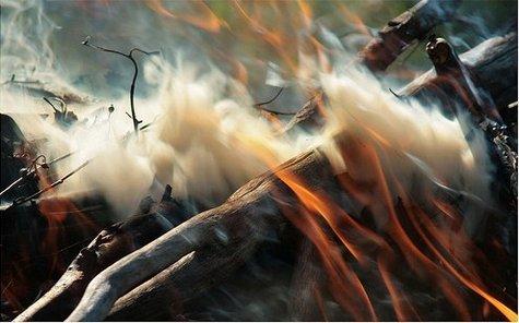 عکس هایی زیبا و دیدنی از هنرنمایی با دود و بخار