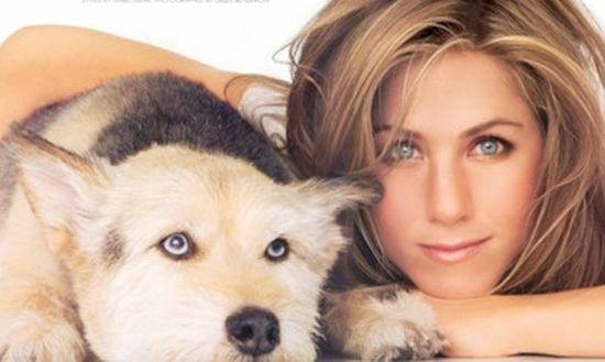 خانه 4 میلیاردی هدیه زن بازیگر به سگش+تصاویر