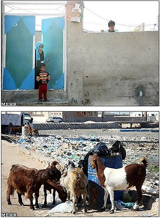 مقایسه سواحل کشورهای همسایه با سواحل ایران